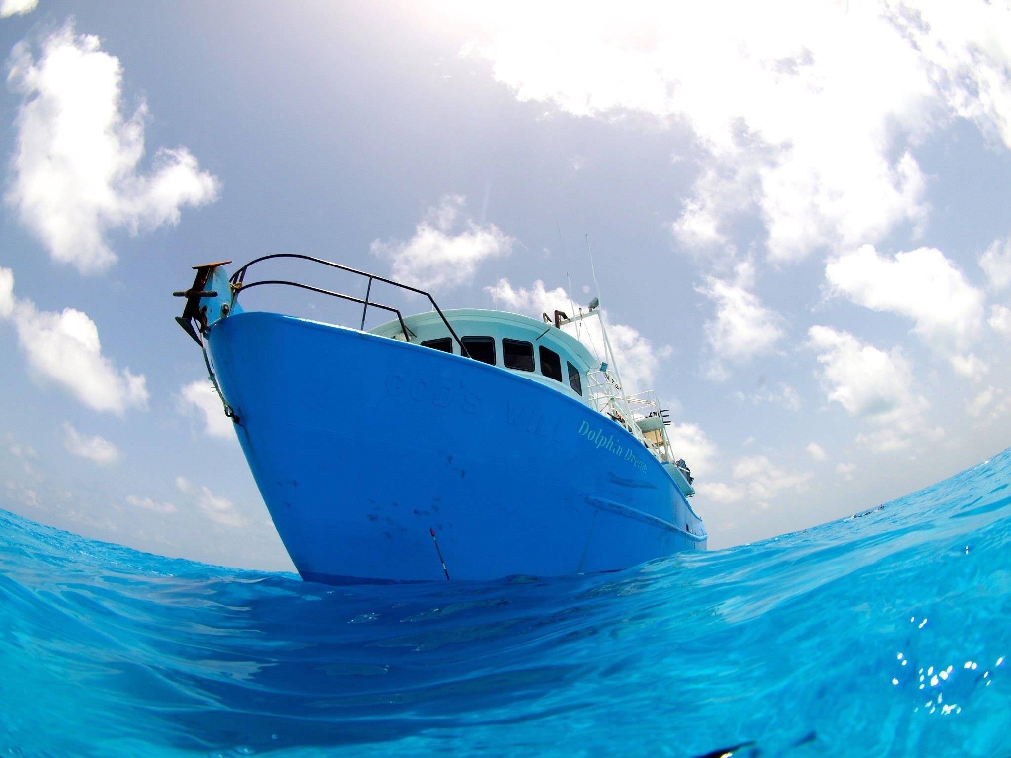 """※来年の予約は可能です。             今年で9年目になるPlayTheE<a href=""""http://play-the-earth.com/dolphin-swim-in-bahamas-2014/""""><br />…続きを読む</a>"""