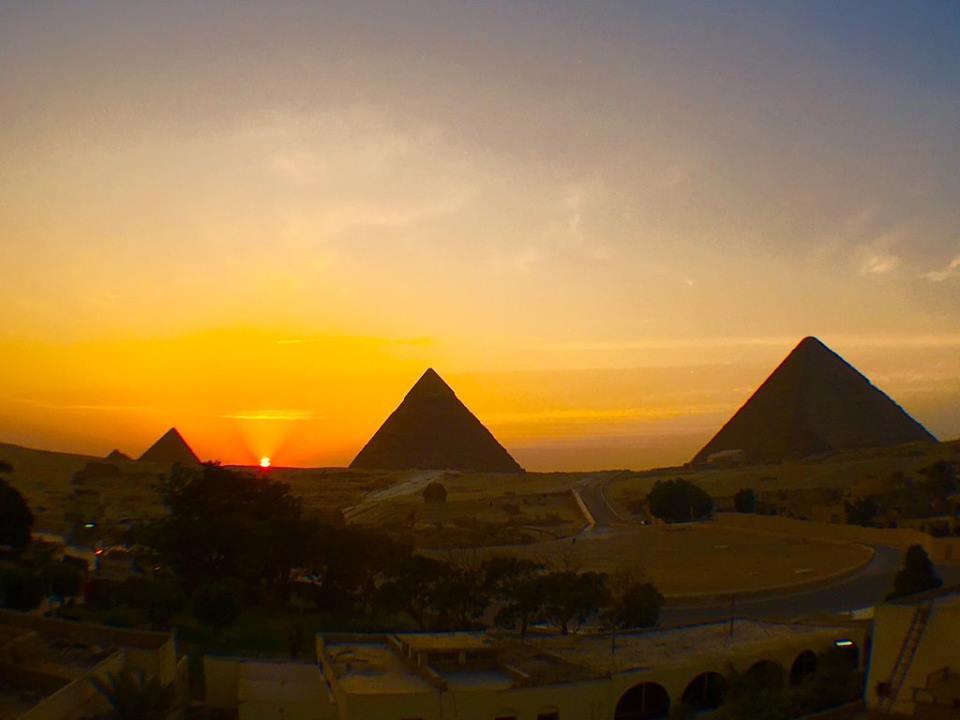 """なんと!エジプトで野生のイルカと泳いで、さらに世界遺産でもあるギザの3大ピラミッドまで観光出来ると<a href=""""http://play-the-earth.com/dolphin-swim-pyramid-tour-egypt/""""><br />…続きを読む</a>"""