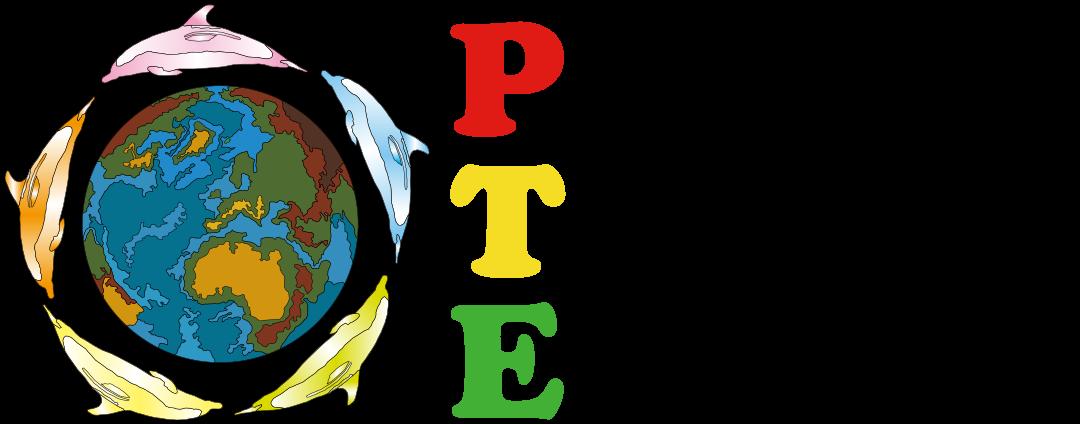 ジープ島ツアー / イルカと泳ぐバハマツアー | Play The Earth